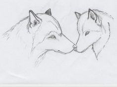 Instructions for creating a wolf drawing step by step. Description from lamboza.tk. I searched for this on bing.com/images