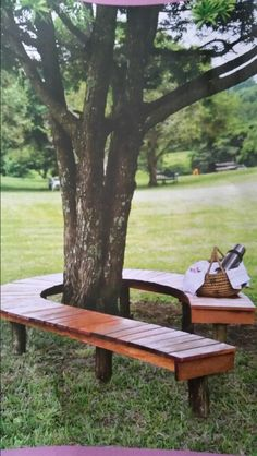34 Best Tree Benches Images Tree Bench Tree Seat Home