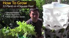 How To Grow 53 Plants in 4 Square Feet with a garden tower, and a worm farm in the middle of it. Very informative on how to make container soil Organic Gardening, Gardening Tips, Vertical Vegetable Gardens, Tower Garden, Small Space Gardening, Growing Vegetables, Gardening Vegetables, Plant Care, Garden Projects