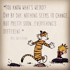 """Calvin and Hobbes QUOTE OF THE DAY (DA): """"You know what's weird? Day by day, nothing seems to change. But pretty soon... everything's different."""" -- Bill Watterson"""