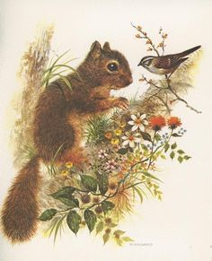 A sweet vintage card with a darling squirrel on it!