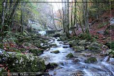 Waterfalls of the Herisson The waterfalls of the Herisson are in Jura, between Doucier and Bonnieu. They spread out on 3.7km with one made u...