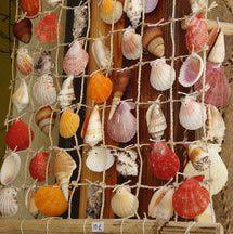 manualidades con conchas de mar- PV