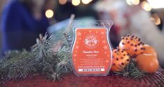Scentsy Scent of the Month - November 2013 (Clementine Clove)  https://tiffanykratz.scentsy.us