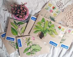 art: words about herbs Botanical mail-art MoreBotanical mail-art Envelope Art, Envelope Design, Letter Writing, Letter Art, Mail Art Envelopes, Snail Mail Pen Pals, Pen Pal Letters, Decorated Envelopes, Lettering