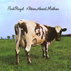 Pink Floyd album cover by Hipgnosis Storm Thorgerson (Atom Heart Mother, Pink Floyd Album Covers, Rock Album Covers, Classic Album Covers, Music Album Covers, Storm Thorgerson, Atom Heart Mother, David Gilmour, Led Zeppelin, Lps