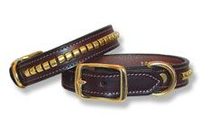 Brow Band Dog Collars