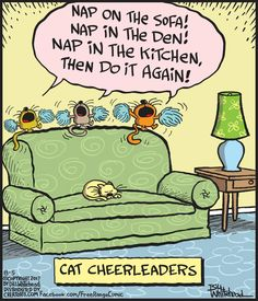 Cat cheerleader #dogsfunnyillustration