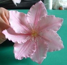 Sharing Dusky Rose Veiners http://www.duskyroseveiners.co.uk for some unique veiners and moulds for sugarcraft