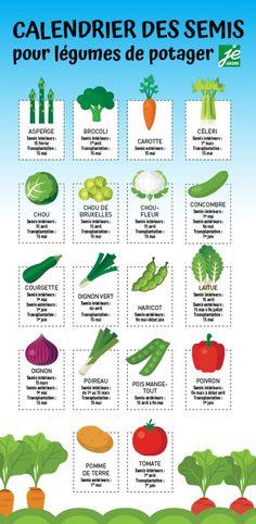 Planting calendar for vegetable garden Je Jardine Potager Bio, Potager Garden, Diy Garden, Garden Pests, Herbs Garden, Garden Art, Garden Drawing, Garden Shrubs, Gardening For Beginners