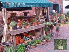 Herb Market open for the summer ... #herbs