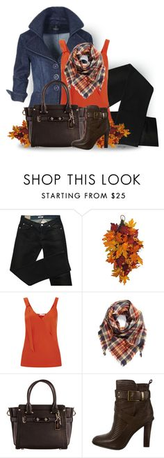 """Untitled #2607"" by sherri-leger ❤ liked on Polyvore featuring Versace, Finery London, BP., Coach and Rachel Zoe"