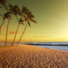 Planning a trip to Goa? Now avail great discounts on #Goatour packages at UAE Exchange Travel.