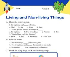Worksheets For Class 1, 1st Grade Math Worksheets, Math Workbook, Science Worksheets, Grade 2 Science, Kindergarten Science, Science Lessons, Class 1 Maths, Values Education