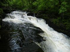 ny state parks   Adirondack State Park Reviews - Northville, NY Attractions ...