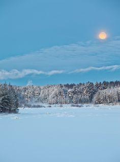 Norrbotten | Sweden (by Rickuz)