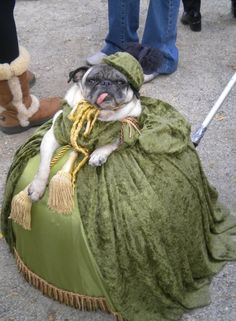 This is a twofer: an animal dressed in Victorian garb, and a horrible excuse for upcycling your grandma's drapes.
