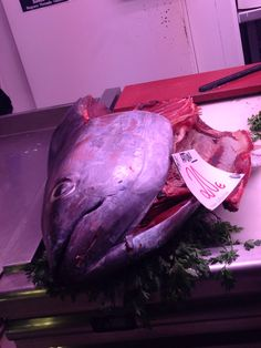Esto es atun! No me gusta atun mucho pero este piz es mas grande! Atun era es el pescado mas grande que he encontrado en el mercado central!