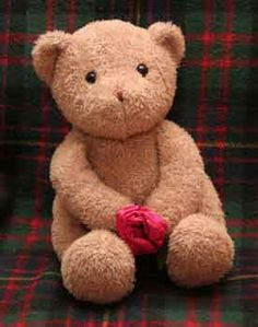 Funny Face Teddy Bear: This First Bear is called funny Face and was given to me by my son Andy for Mothers day many years ago. There is no label on the bear but i do love the