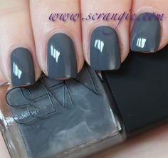 Scrangie swatches NARS Storm Bird Nail Lacquer - Fall 2012