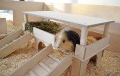 Luxus Traumvilla für Meerschweinchen mit Decke von Lazzyy's Kuschelshop auf DaWanda.com