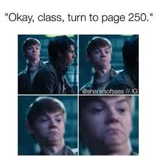 For those who love the Maze Runner Maze Runner Thomas, Newt Maze Runner, Newt Thomas, Maze Runner Funny, Maze Runner Movie, Dylan Thomas, Maze Runner Trilogy, Maze Runner Series, Thomas Brodie Sangster