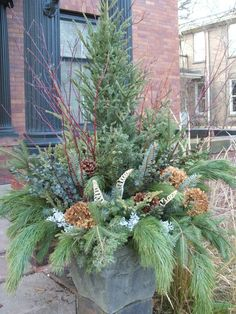 winter Planter display