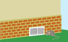 4 Ways to Get Rid of Possums - wikiHow