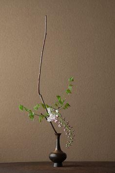 2012年5月16日(水) 白き雅びというべきもの。 花=白藤(シロフジ) 器=金銅華瓶(鎌倉時代)