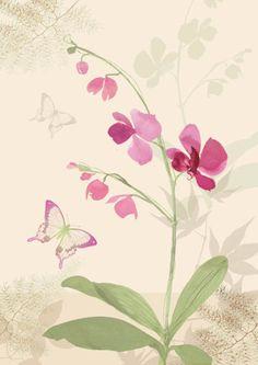 Lynn Horrabin - orchid.jpg