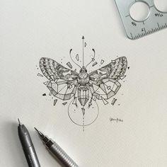 Geometric Beasts   Moth