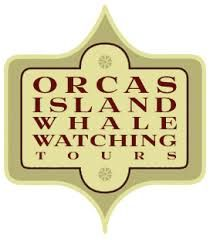 whale watching orcas island - Google Search