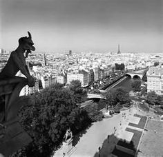 Spitting Gargoyle Of Notre Dame - Bing Images