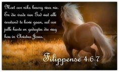 FILIPPENSE oor niks besorg nie, maar laat julle begeertes in alles… Afrikaanse Quotes, Thank You Jesus, Bible Verses, Scriptures, Prayers, Inspirational Quotes, Faith, Thoughts, Motivation