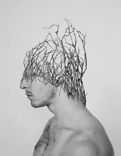 Mutant Nature Portraits (UPDATE) - Alexandra Bellissimo 'Simulations' Series is…