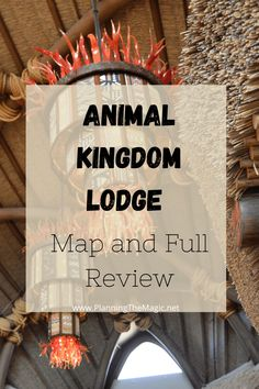 Animal Kingdom Lodge Map and Full Review - Planning The Magic Disney Resort Hotels, Disney World Resorts, Disney Vacations, Walt Disney World, Disney Travel, Family Vacations, Cruise Vacation, Disney World Tips And Tricks, Disney Tips