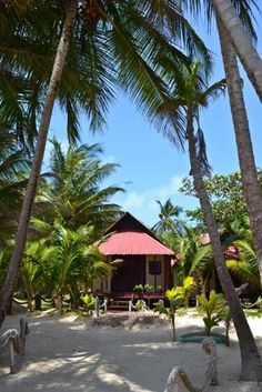 Little Corn Island, your own bungalow on the beach.