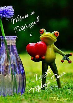 Good Morning, Humor, Animals, Madeleine, Good Morning Funny, Balcony, Buen Dia, Animales, Bonjour