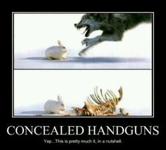 Concealed handguns….love this