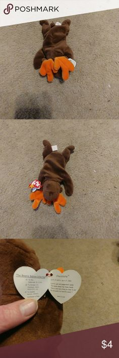 TY beanie babies chocolate the moose Near mint condition No rips or stains  Other 53f0dfe8e561