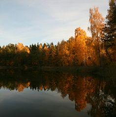 Ognie jesieni