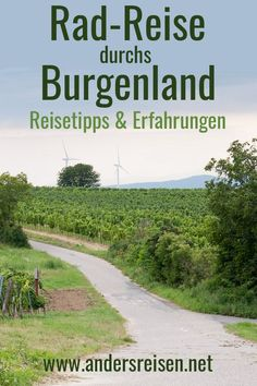 Reisen In Europa, Au Pair, Mtb, Mountain Biking, Country Roads, Jokes, Flott, Nature, Travel