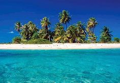 Barbados - Click image to find more Travel Pinterest pins