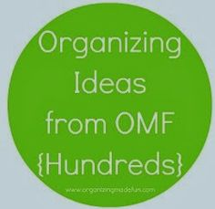 Organizing Made Fun: The best organizing advice you'll ever get!