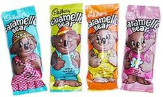 Caramelo bear - now living in Australia they are called Caramelo Koala