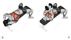 The 8 Best Full Gym Chest Workout ~ .
