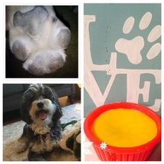 PAW WAX🐶  As the cold weather is settling in and we can't forget to take care of our furbabies!!!   Homemade paw wax to protect from snow caking in their paws, chemicals from the deicer burning their pads and the overall cold weather chapping and cracking their paws 🐶❤️ all natural ingredients used for safety.  $15 each