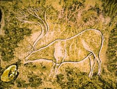 "The Scilly Cave Painting - ""Elk with Pasty"""