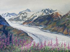 """Using Ted's photograph, """"Glacier With Fireweeds"""" as a reference http://fineartamerica.com/featured/glacier-with-fireweeds-stanza-widen.html , I have painted the Salmon Glacier here in British Columbia, Canada in midsummer with flowering fireweeds in the foreground. This painting with the fireweeds which can be seen everywhere at this time of the year shows the incredible size of the fifth largest glacier in the world :-)"""
