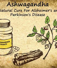 By selectively increasing hormone levels, Ashwagandha offers an excellent natural cure for hypothyroidism. Read more on Ashwagandha for thyroid problems. Natural Cures For Hypothyroidism, Hypothyroidism Treatment, Natural Cancer Cures, Cancer Treatment, Hypothyroidism Diet, Natural Healing, Natural Remedies, Alzheimer Care, Natural Treatments